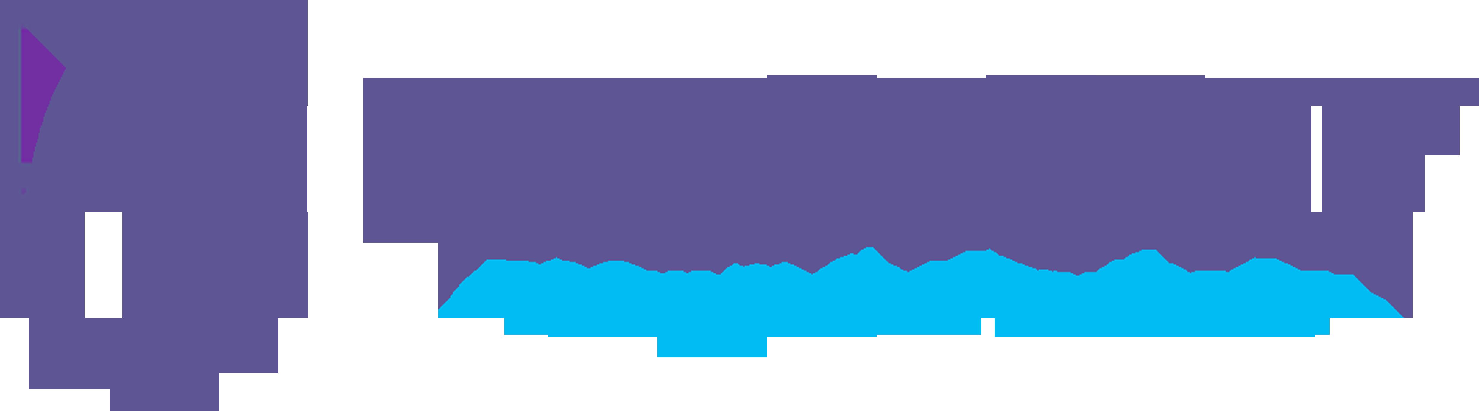 BizStory